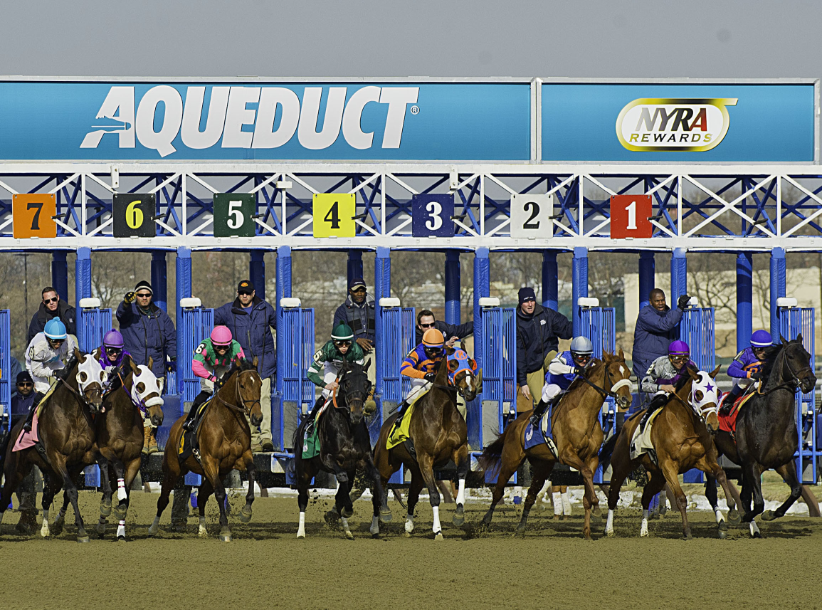 Horse racing picks: Best bets and Pick 6 at Aqueduct Racetrack today