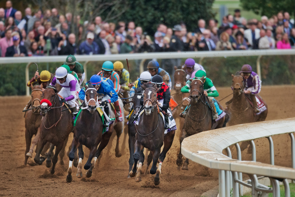 2020 Breeders Cup, Odds and Betting Preview