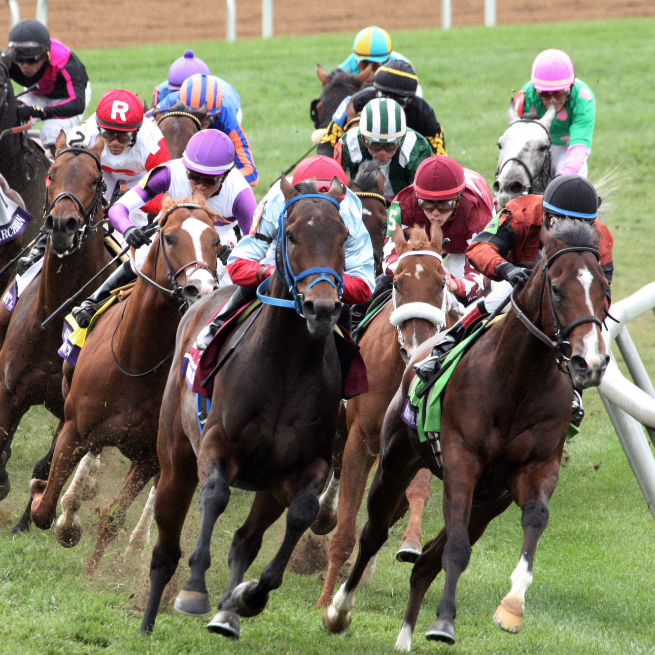 Breeders' Cup 2018 analysis and picks: BC Turf at Churchill Downs