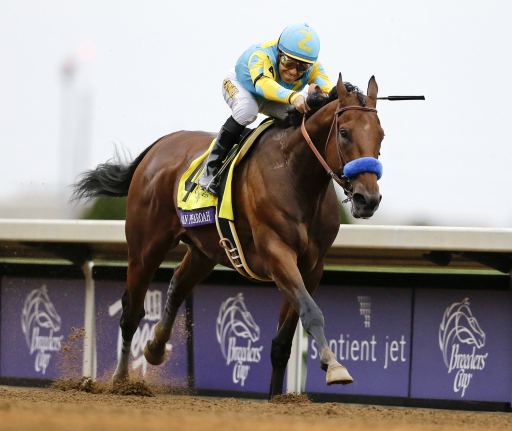 Picks for the Breeders' Cup 2018 BC Classic at Churchill Downs