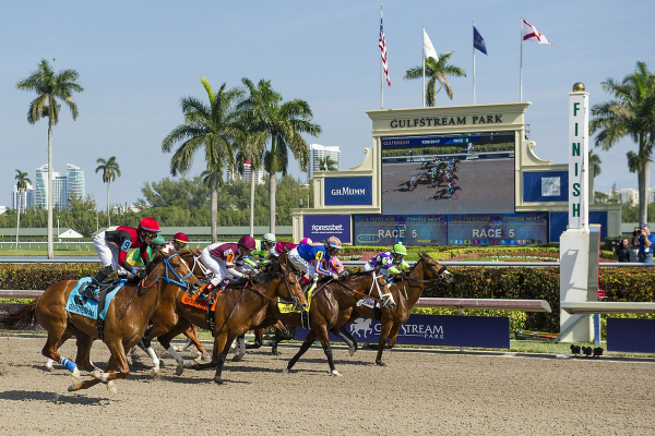 Gulfstream Park Best Bets for June 30 – Race 5