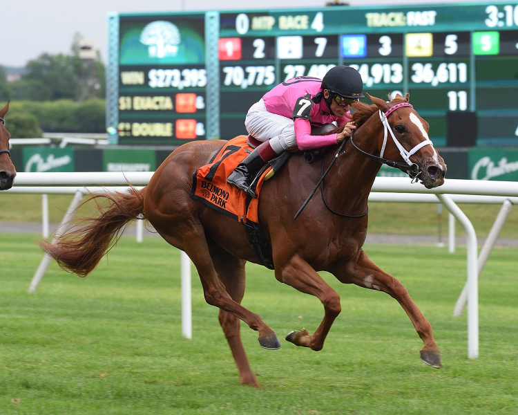 Betting at Belmont Park: Pebbles Stakes picks and analysis