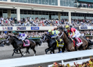 Gulfstream Park Picks: 2019 Florida Derby Analysis