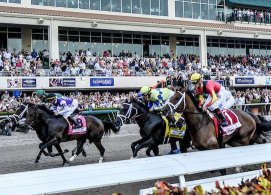 Gulfstream Park Picks: 2019 Florida Derby Analysis
