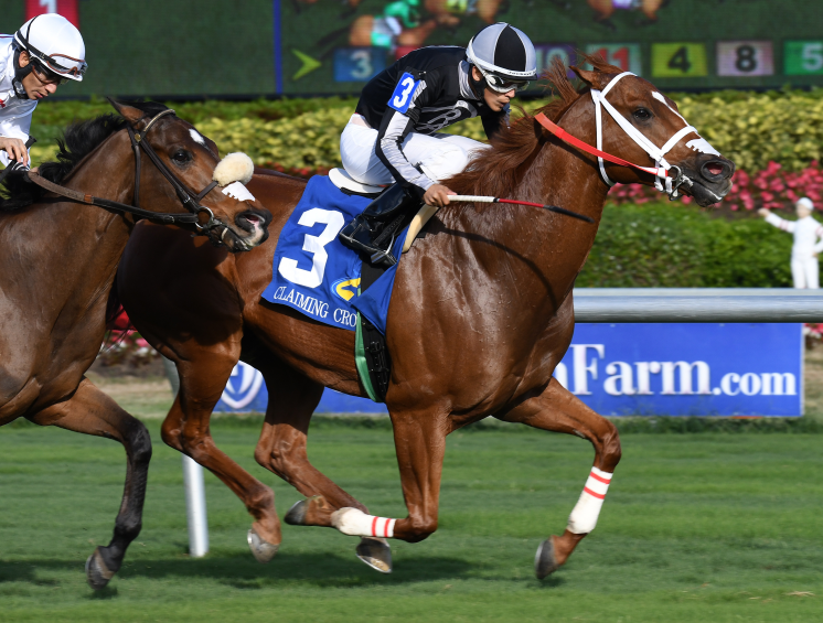 Today's Gulfstream Park Picks: Race 4, September 16