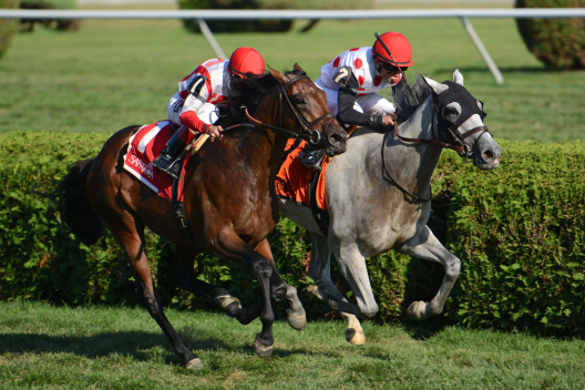 Saratoga Racing September 1 – Race 9 Analysis, Picks & Best Bets