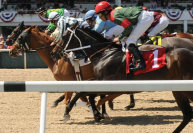 2019 Tampa Bay Derby Picks and Analysis