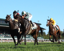 Betting on the First Lady Stakes at Keeneland: picks & analysis