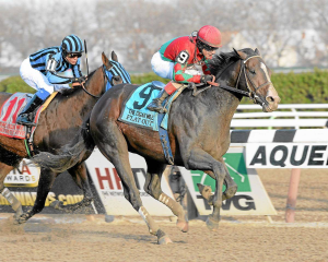 Analysis and picks for the Cigar Mile at Aqueduct Racetrack today