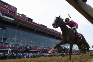 Picking Ponies: Picking Winners at the Belmont