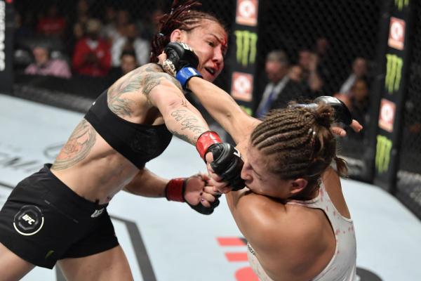 UFC 240: Favorites Versus Underdogs