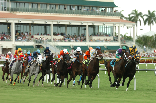 Gulfstream Park September 9 – Race 4 Analysis, Picks & Best Bets