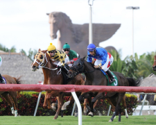 Horse Racing at Gulfstream Park today: Picks and analysis