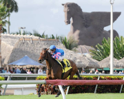Picks for the 2018 Pegasus World Cup at Gulfstream Park