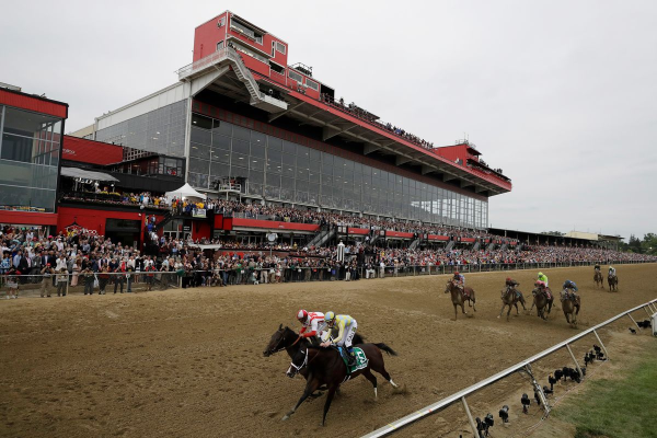 2019 Preakness Betting Tips and Advice