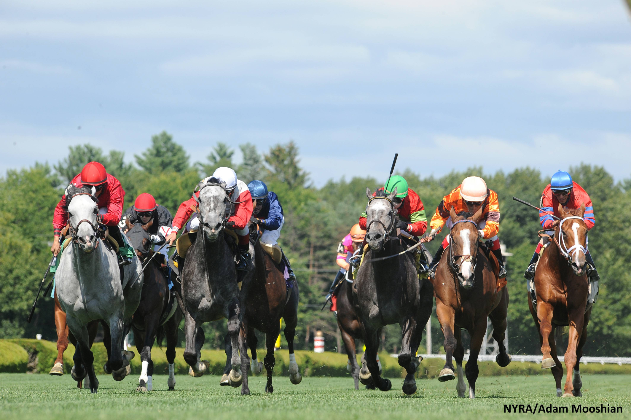 Saratoga Racing August 9 – Race 8 Analysis, Picks & Best Bets