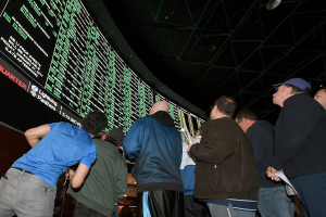 MGM Sports Betting Stock on the Rise